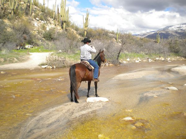 Riding Horses In Catalina State Park Near Tucson